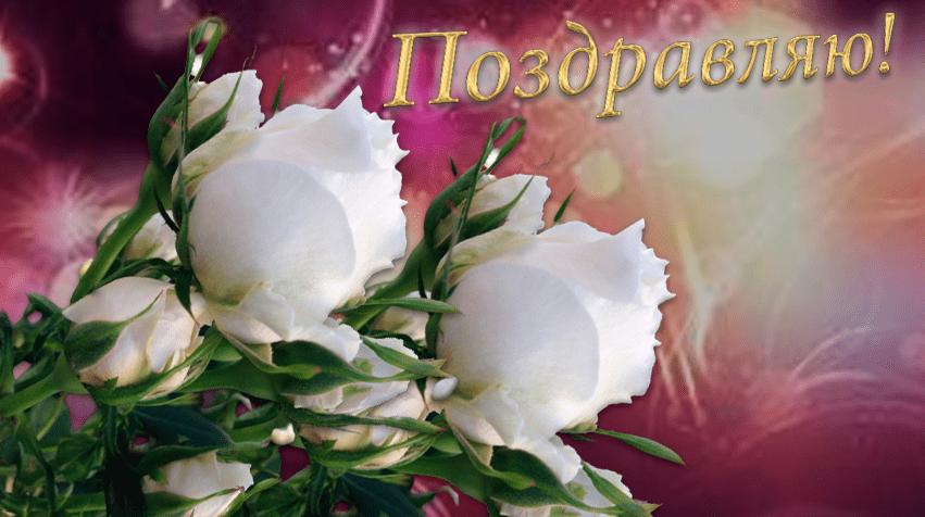 лучшие цветы открытки