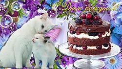 Необычная добрая открытка с Днем рождения