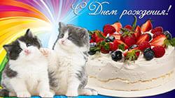 Котята и торт открытки для ватсапа с Днем рождения