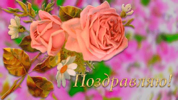 Поздравляю открытки