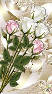 Нежный торжественный букет белых и розовых роз